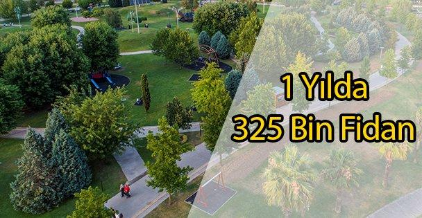 1 Yılda 325 Bin Fidan