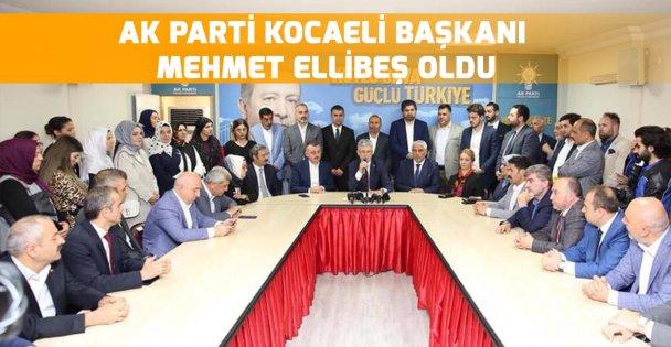 Ak Parti İl Başkanlığı'na Ellibeş atandı