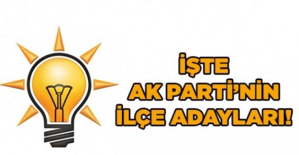 AK Parti'nin ilçe adayları!