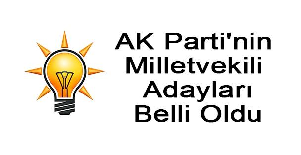 AK Parti'nin Milletvekili Adayları Belli Oldu