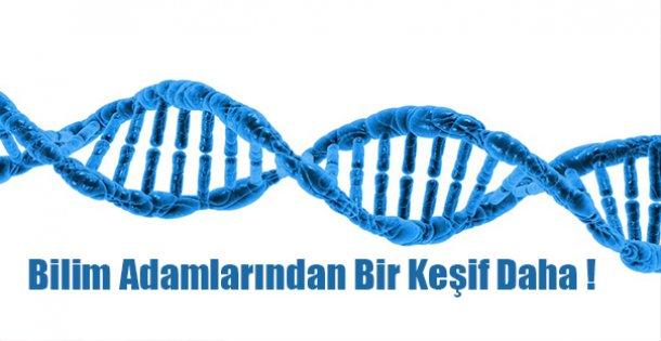 Bilim Adamlarında Bir Keşif Daha!