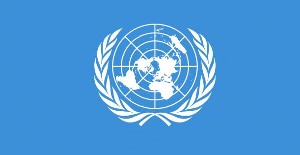 Birleşmiş Milletler Neden Kurulmuştu..?