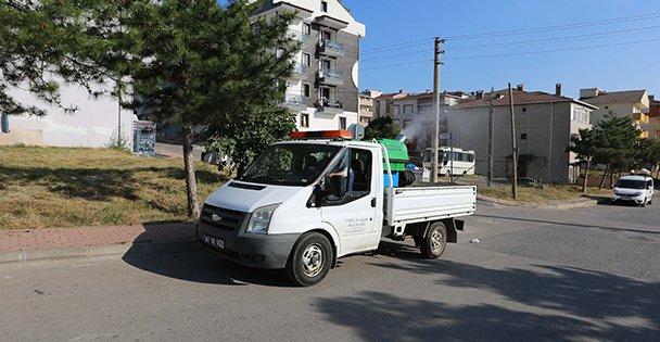Çayırova Sokakları Sivri Sinek ve Haşeratlara Karşı İlaçlanıyor