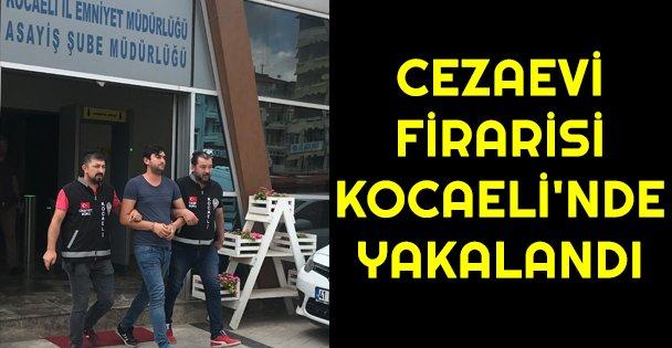 Cezaevi firarisi Kocaeli'nde yakalandı