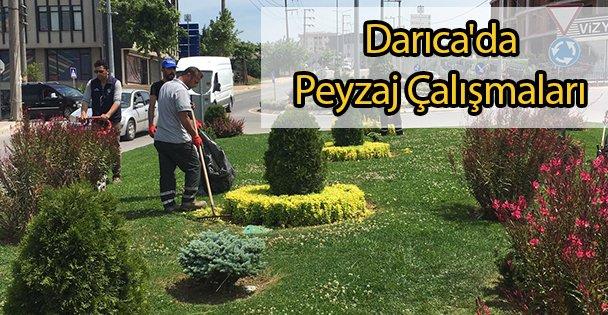 Darıca'da Peyzaj Çalışmaları
