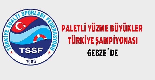 Gebze'de Paletli yüzme şampiyonası yapılacak