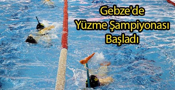 Gebze'de Yüzme Şampiyonası Başladı