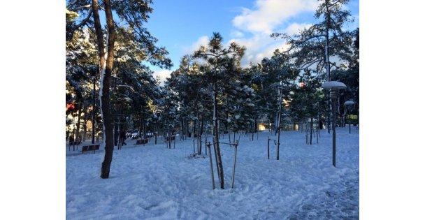 Kar, Yağmur, Suyun Önemi ve Çeşme Kültürü