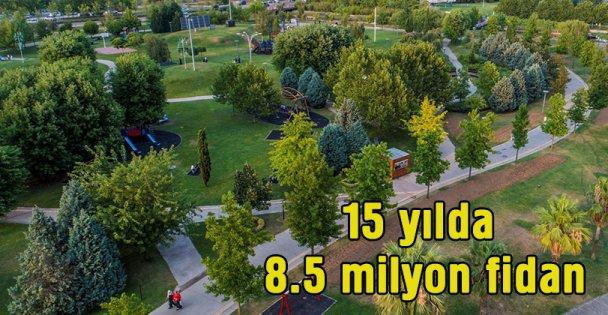 Kocaeli'de 15 yılda 8,5 milyon fidan dikildi