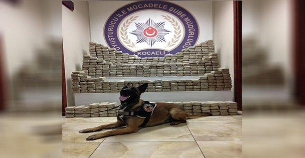 Kocaeli'de 2016'da 2 ton uyuşturucu ele geçirildi