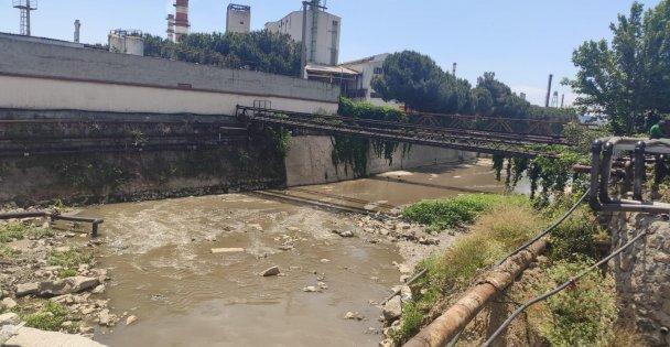 Kocaeli'de dereye atık su döküldüğü iddiası