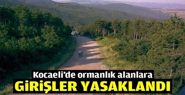 Kocaelide ormanlık alanlara girişler yasaklandı