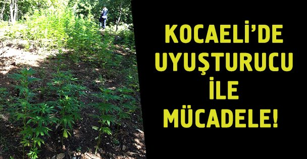 Kocaeli'de uyuşturucuyla mücadele