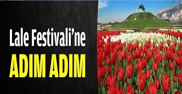 Lale Festivali'ne adım adım