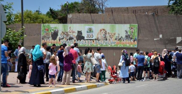Önce bayramlaşma sonra hayvanat bahçesi