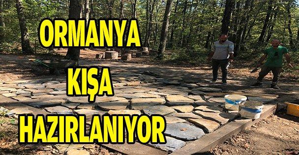ORMANYA KIŞA HAZIRLANIYOR