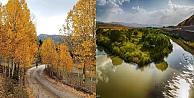 Anadolunun Vatan Olmasında Vakıf  Ormanlarının Önemi  Ve Vakıflar