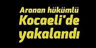 Aranan hükümlü Kocaelide yakalandı