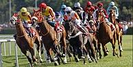 At yarışları yapılacak