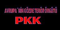 Avrupanın gözde terör örgütü PKK