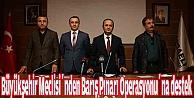 Büyükşehir Meclisinden Barış Pınarı Operasyonuna destek