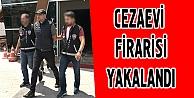 Cezaevi firarisi Kocaelide yakalandı