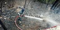Çıkan yangında 2 dönüm ormanlık alan zarar gördü