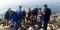 Denize atlayan ceylan kurtarıldı