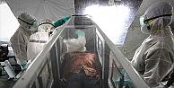 Ebola virüsü spermde iki yıl yaşayabiliyor