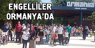 Engelliler Ormanyada