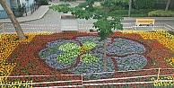 Eskihisar Rengarenk Çiçeklerle Donatıldı