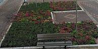 Kent Meydanı yeşillendirilmeye devam ediliyor
