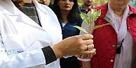 KO-MEKten Tıbbi Aromatik Bitki Yetiştiriciliğine tam destek