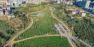 Kocaelide Kişi Başına Düşen Yeşil Alan Miktarı 12,57 Metrekare Oldu