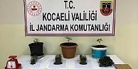 Kocaelide uyuşturucu operasyonu: 4 gözaltı