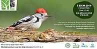 Kuş gözlemcileri Ormanya#39;da buluşacak