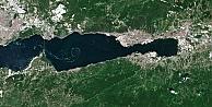 Marmara Denizindeki Müsilajın Yoğunluk Haritası Çıkarıldı