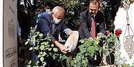 Prof. Dr. Dursunun kaza yaptığı alandan alınan toprak Kocaelideki mezarına bırakıldı