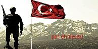 TSK'nın Afrin Harekâtı  kararlı olarak sürdürülmeli