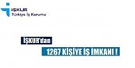 1267 Eleman Alınacak!
