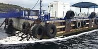 Darıca'da deniz kirliliği