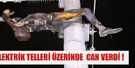 Elektrik Tellerinde Can Verdi