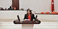 İzmit'teki Sinek Salgını Mecliste