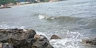 Kocaeli'de sahile vuran varilde inceleme başlatıldı