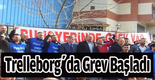 Trelleborg'da grev başladı