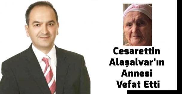 Tübitak Gıda Bölümü Başkanı Cesarettin Alaşalvar'ın Annesi Vefat Etti