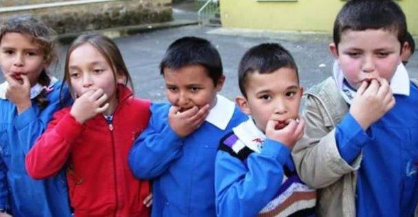 Türk Dil Yılı ve Kuşdili Belgeseli