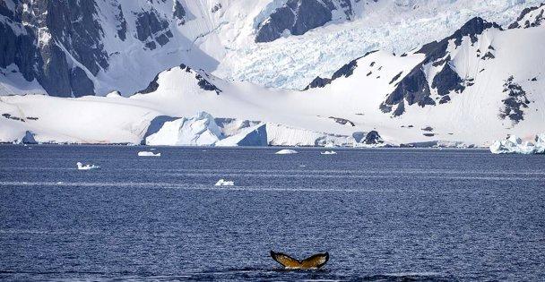 Türk ekibi Antarktika yolculuğuna başlayacak